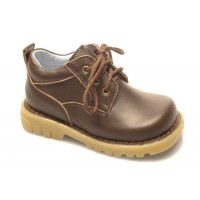 Alek Brown Leather Shoe