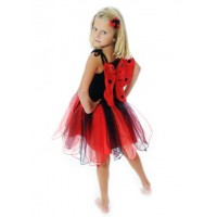 Lady Bird Party Dress