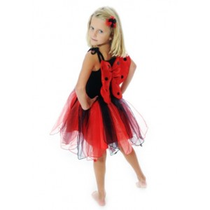 Fairy Girls Lady Bird Party Dress